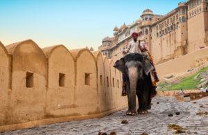 India - Jaipur Amber Fort