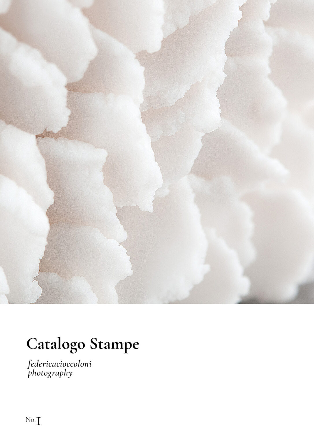 Cataloghi stampe